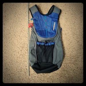 SwissGear hydration backpack